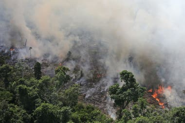 Vista de un incendio que afectó el Amazonas en septiembre de 2013, los incendios son cada vez más frecuentes