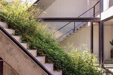 Las herbáceas de media sombra se colocaron en una red con bolsillos llenos de tierra con piedra pómez cubierta de una manta de cocoCrédito: Jeremías Thomas, gentileza BAM! Arquitectura
