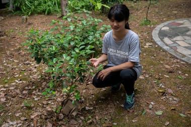 """""""La urgencia climática es la amenaza más grave para la supervivencia de la humanidad"""", dice la activista climática china Howey Ou, de 17 años"""