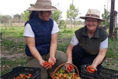 Alina Ruiz junto a su madre en la cosecha de tomates de la huerta en la finca Don Miguel