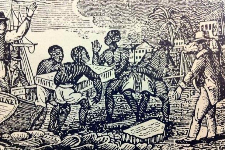 Tudor tuvo el monopolio de ese comercio tanto en Habana y otros puertos de Cuba como en Jamaica.