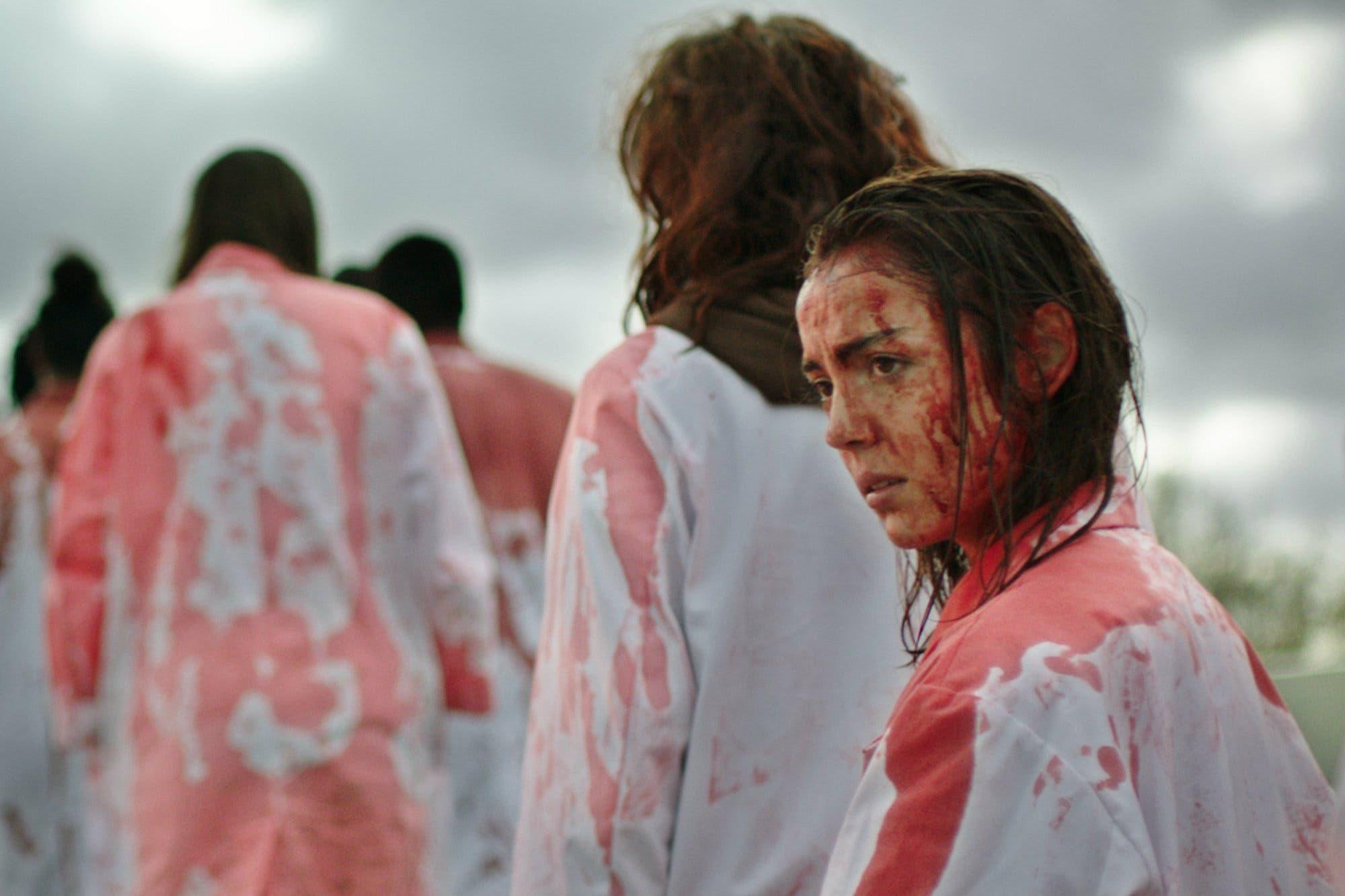 Streaming: cinco películas de mujeres directoras