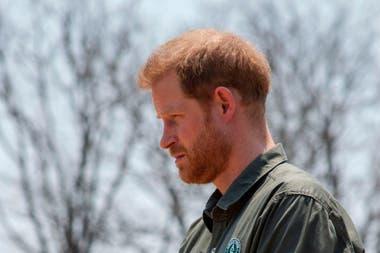 El nieto menor de la reina Isabel II habló sobre el coronavirus y los científicos británicos estallaron