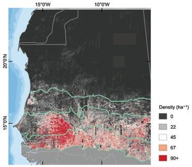 En este mapa se puede ver la cantidad de árboles por hectárea en la zona estudiada