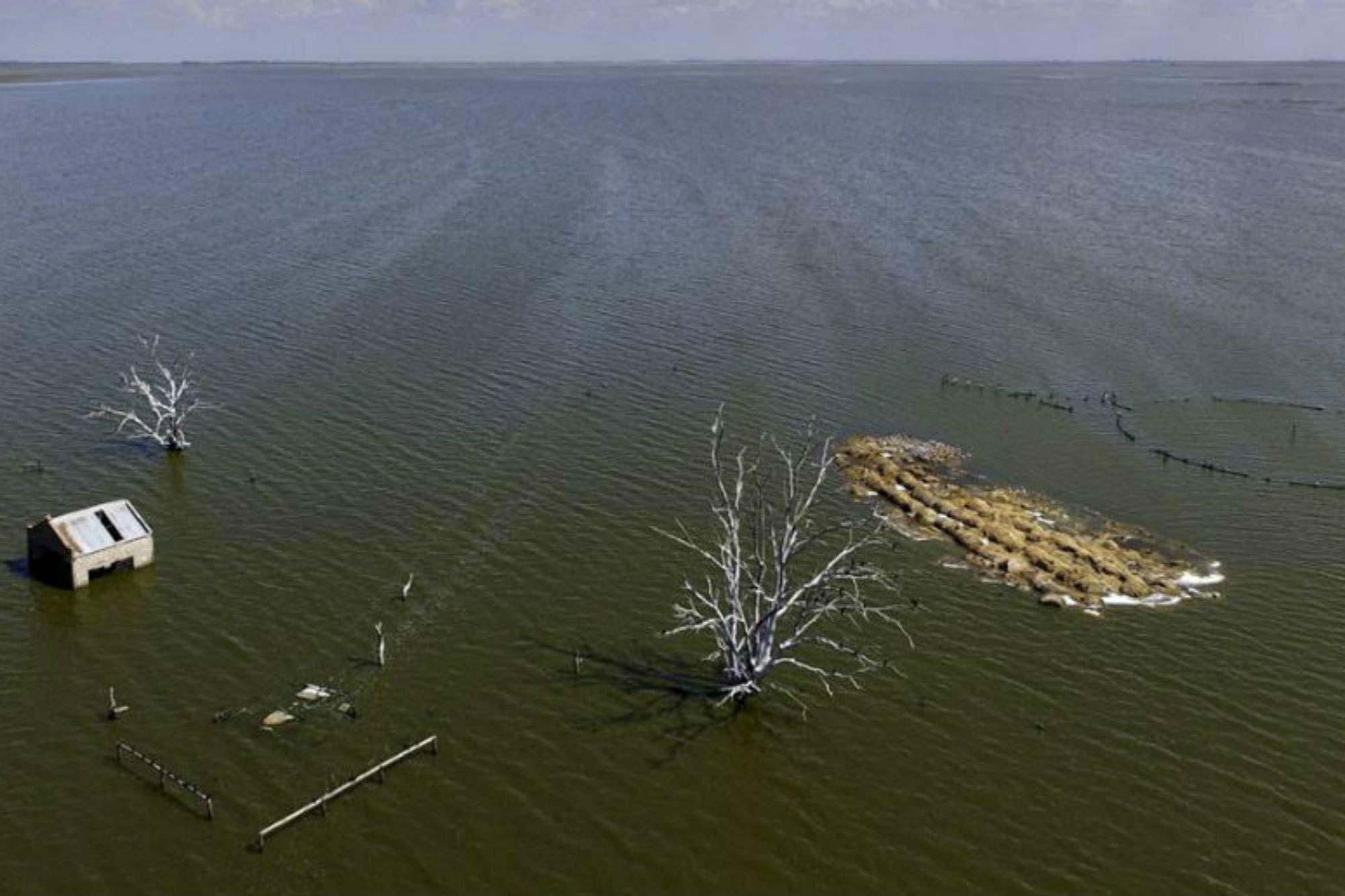 Resultado de imagen para Laguna La Picasa + hidrovía