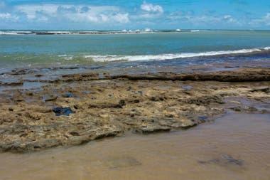 El presidente de Brasil, Jair Bolsonaro, dijo el 7 de octubre que las misteriosas manchas de petróleo que aparecieron en 132 playas en el noreste de Brasil tienen su origen en otro país