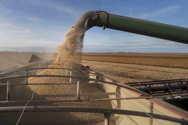 A casi tres meses del anuncio del Gobierno, un 30% de los 38.000 productores beneficiarios de la compensación de la soja, aun esperan el depósito en sus cuentas