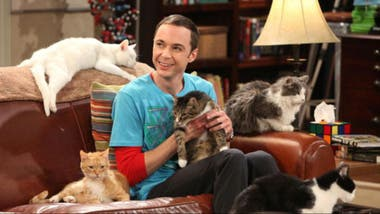 Jim Parsons como Sheldon Cooper en The Big Bang Theory