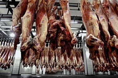 En agosto ingresaron por la carne casi US$300 millones