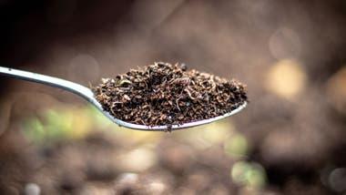 El hierro en la tierra no puede ser absorbido por nuestro sistema digestivo.