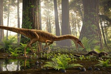 Erythrovenator jacuiensis, así han bautizado a la nueva especie descubierta en el sur de Brasil de uno de los más antiguos antepasados del Tyrannosaurus Rex que vivió hace unos 230 millones de años durante la ascensión de la era de los dinosaurios