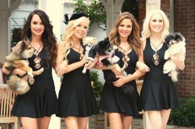 """""""Pet Moms"""" es un reality protagonizado por 4 amigas y sus mascotas en el sur de California. Donna Spangler, Shanna Olson, Brittan Taylor and Maggie OBrienon son actrices, productoras, escritoras y emprendedoras. El espectáculo se centra en su amistad y en sus familias perrunas."""