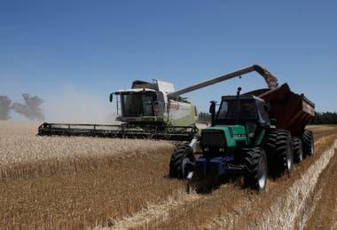 Agroindustria con salida al mundo: la caída de la actividad y del poder adquisitivo afecta al sector, que también da cuenta de problemas estructurales; sin embargo, con innovación aplicada a las tareas rurales se estima que hay un enorme potencial; las exportaciones son por unos US$26.000 millones a