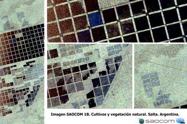 Vegetación y cultivos en la provincia de Salta