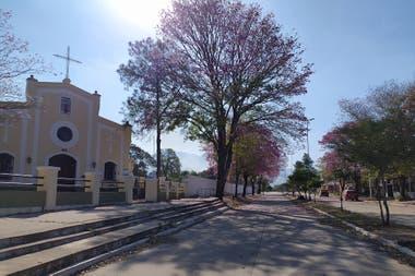 Lapachos y sol: las calles tranquilas de la ciudad de Aguaray