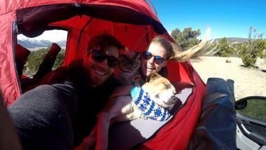 La popularidad de los animales le ha permitido a la pareja seguir su afición por las excursiones.