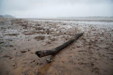 La bajante del río Paraná es la más grave en diez años, los registros obtenidos en las últimas semanas muestran que la altura del río en el Puerto de Rosario es la más baja desde el año 2008