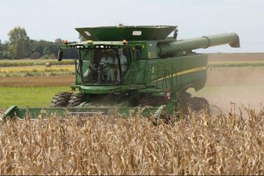 La cosecha de maíz en la zona núcleo avanza con picos de 140 quintales por hectárea de rinde