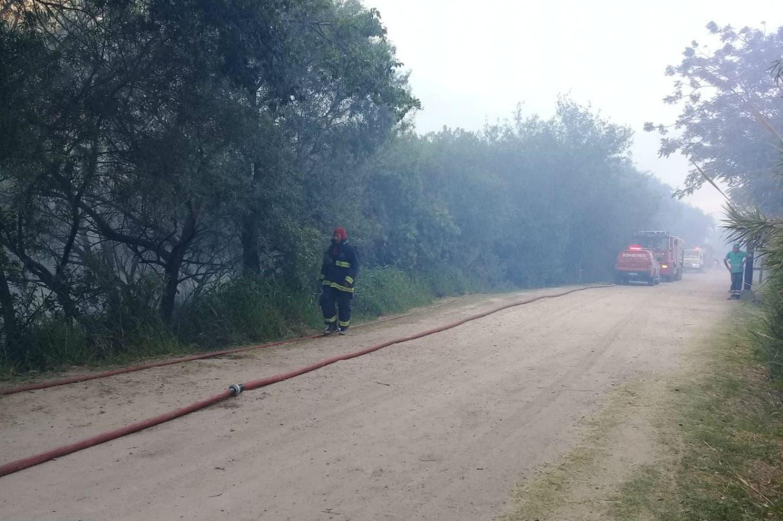 Se incendia un sector de la Reserva Ecológica de Puerto Madero