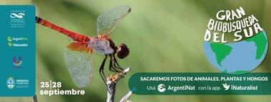 La iniciativa, que se realiza entre el 25 y el 28 de septiembre, tiene su origen en Australia y fue dada a conocer por la Secretaría de Ambiente y Ordenamiento Territorial de Mendoza, Todo el país puede participar del concurso.