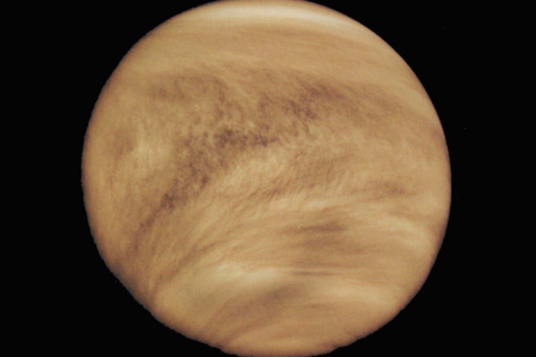 Hallazgo resonante: anuncian que hay posibles indicios de vida en Venus