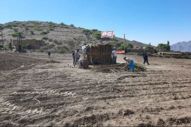 En medio de un lote arado y listo para rayar y sembrar en la finca de los Wayar, instalaron una casa e izaron su bandera
