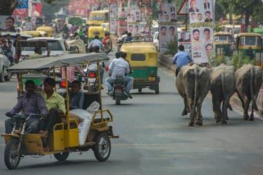 El tránsito en las grandes ciudades, todo un desafío