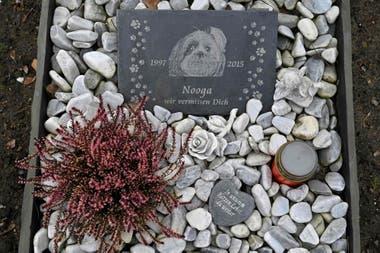 La tumba del perro Nooga