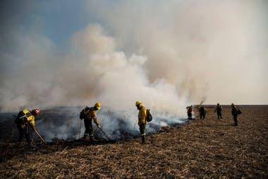 El incendio en el Paraná destruyó casi tres veces la superficie de CABA