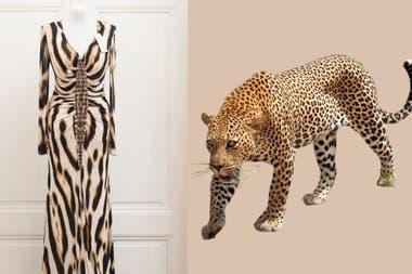 Un clásico de Susana Giménez en Animalia: el vestido Cavalli que la diva prestó para la muestra estampa la piel del leopardo