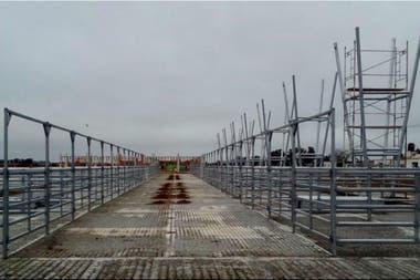 Los corrales de material galvanizado junto con el techo se encuentran bajo los protocolos requeridos en el mercado de exportación