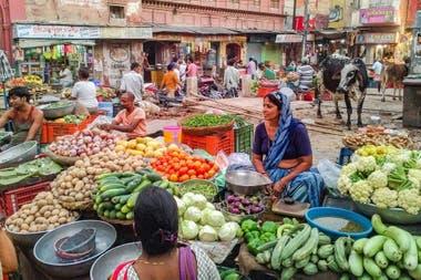 Los mercados callejeros, como en otros destinos, son propicios para tomarle el pulso a la sociedad en India