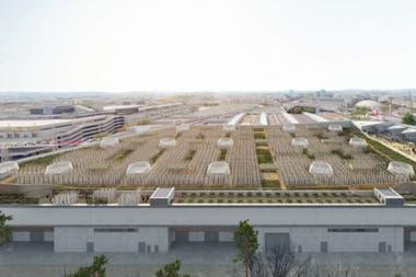 La iniciativa utiliza 14 mil metros cuadrados disponibles en el techo de un centro de exposiciones en París y prevé producir 1000 kilos diarios de verduras y frutas en 2020