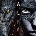 Afiche de Alfa